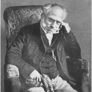 mitleid schopenhauer bilder